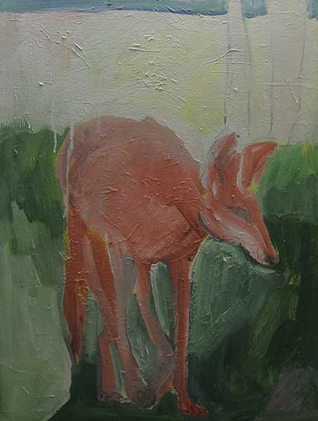 Red-Coyote